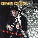 Closer Than Skin by David Cross