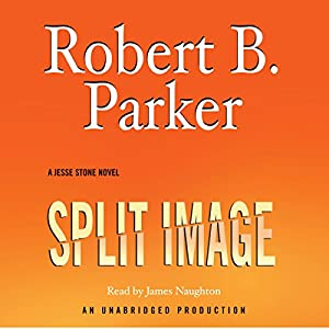Split Image Audiobook