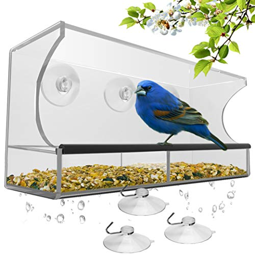 Window Bird Feeder Strong