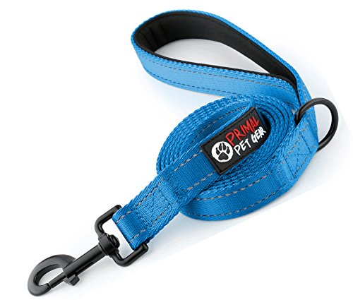 Blue Postage - Primal Pet Gear Dog Leash - Extra Heavy Duty - Thick 3mm Nylon - 6ft Long - Premium Quality - 1