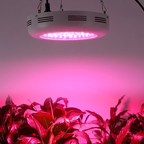 Derlights 300W UFO Full Spectrum LED Grow Light with IR & UV, Growing Lamp for Indoor Gardening Hydroponics System Greenhouse Flowering Plant (300W)