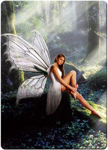 Forest Fairy fridge magnet 3