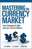 Mastering the Currency Market