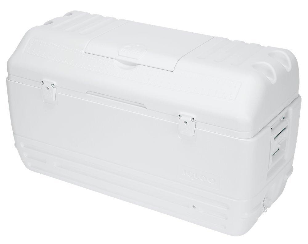 Igloo - Nevera rígida rectangular, color blanco: Amazon.es ...