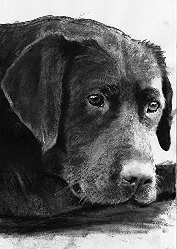 Charcoal Labrador Art, Black Labrador Wall Art, Lab Owner Gift, Lab Dog Art, Dog Wall Art Print, Colorful Labrador Dog Painting Decor