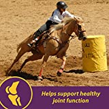 Horse Health Joint Combo Classic, 3.75 lbs