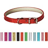 Extra Small Pet Collar (Shiny Red)