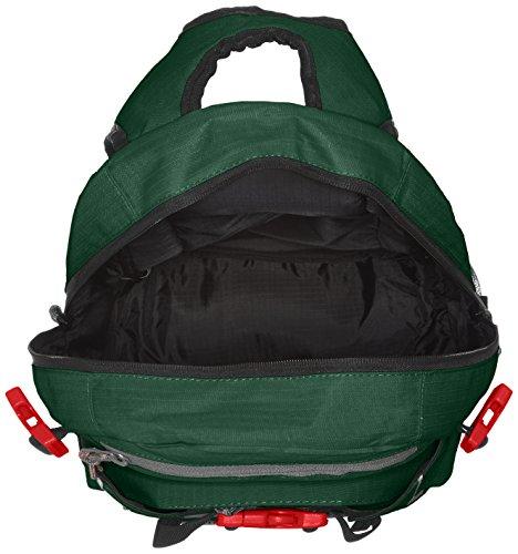 Forvert Backpack Forvert Louis green Ripstop Ripstop Green 1w56Oqz