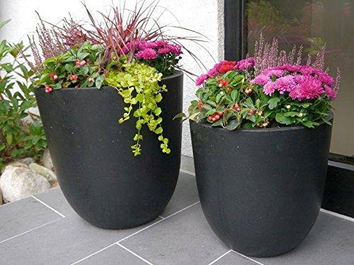 Großer Pflanzkübel NERO aus Fiberglas 60x60x60cm in anthrazit, Blumenkübel, Pflanzgefäße, Pflanztopf, Übertopf, rund