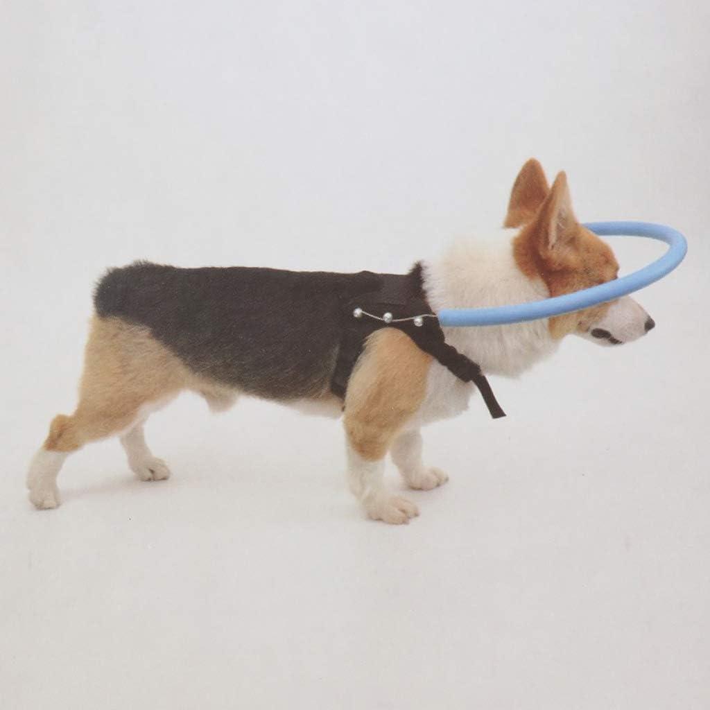 SM SunniMix Ciego Perro Cachorro Anillo Anticolisi/ón Accesorios de Animal Doemstico Resistente Duradero