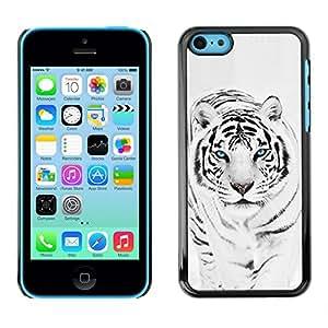 Paccase / SLIM PC / Aliminium Casa Carcasa Funda Case Cover para - Tiger Snow Leopard Winter Black White Fur Animal - Apple Iphone 5C