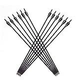 "Siomentdi 12Pcs/Lot Archery Carbon Arrows, 32"" 8mm Carbon Shaft Practice Hunting Arrows"