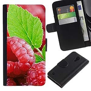 KingStore / Leather Etui en cuir / Samsung Galaxy S4 IV I9500 / Fruit Fresh Mint