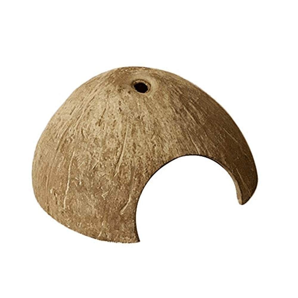 Real Coconut Shell Reptile Hideout Shelter for Lizards Spiders Hermit Crabs