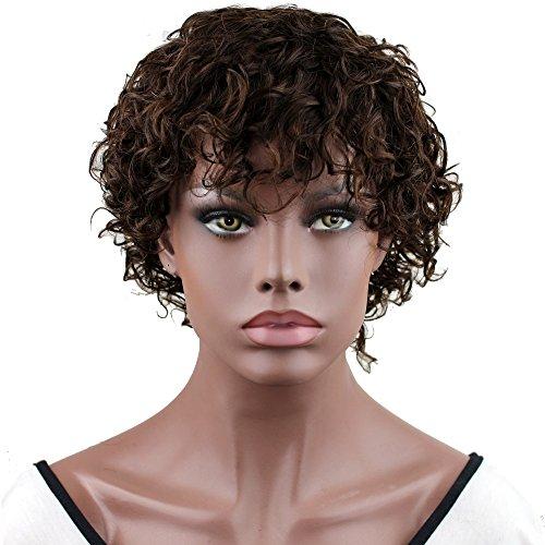 Dreambeauty Human Hair Wigs for Black Women Short Fashion Curly Wigs African Amercian Wigs (Wave Hair Wig)