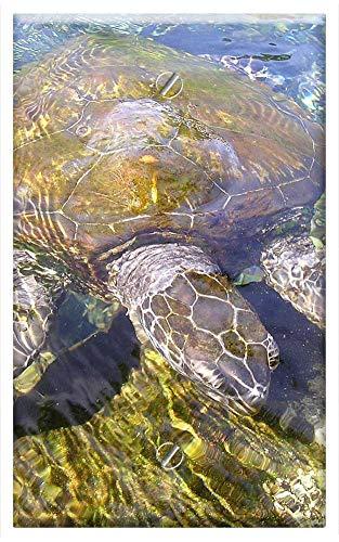(Single-Gang Blank Wall Plate Cover - Turtle Animal Water Creature Meeresbewohner)