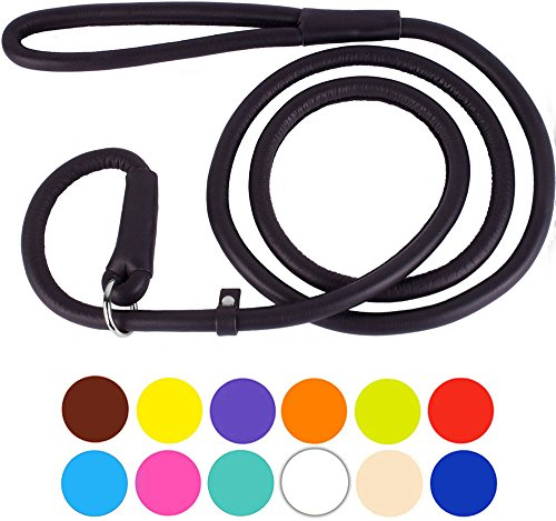 CollarDirect Rolled Leather Dog Leash 6ft or 4ft, Heavy Duty Slip Lead, Slip Leashes for Small Medium Large Dogs, Round Puppy Leash Female Male Pink Black Brown Red (L 4ft, Matte Black)