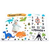 WERNNSAI Dinosaur Baby Monthly Milestone Blanket - Soft Flannel Nursery Bed Blankets for Boys Newborn Baby Shower Gift Blankets, Photography Backdrop with Props