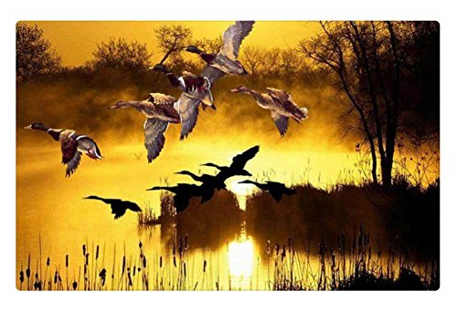 Duck Rug (iRocket Indoor Floor Rug/Mat - Flying Ducks (23.6 x 15.7)