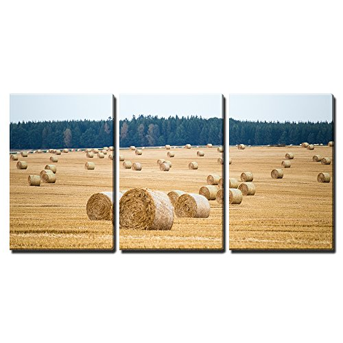 "wall26 - 3 Piece Canvas Wall Art - Hay Bales on The Field After Harvest - Modern Home Art Stretched and Framed Ready to Hang - 16""x24""x3 Panels"