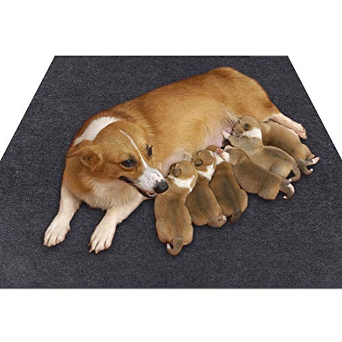 Box Whelping Puppy (Sszhen Whelping Box Liner Mat,Washable and Reusable Puppy Pad,Premium Absorbent Urine pet Mat,Under The Dog Crate Mat,Protect Your Floor, Furniture or Any Other Area from Liquid Leakage (36