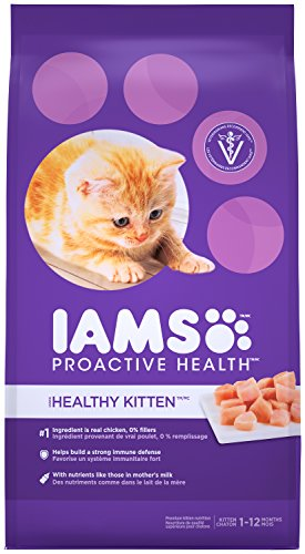 IAMS PROACTIVE HEALTH Kitten Dry Cat Food 7 Pounds