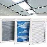 Manual/Motorized Skylight Roof Window Cellular