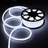 100FT Cool White Flexible Neon LED Rope Light Lighting Strip Tube Outdoor Holiday Party Room Decor Lighting 110V