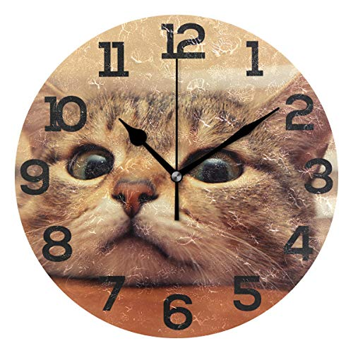 JERECY Cool Cat Wall Clock Silent Non Ticking Acrylic 10 Inch Home Office School Decorative Round Clock Art