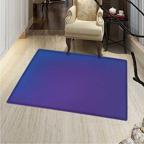 (Indigo Area Rug Carpet Ombre Vivid Colored Image Purple Pink Seem Shadow Detail Art Print Living Dinning Room Bedroom Rugs 3'x4' Dark Blue Purple)