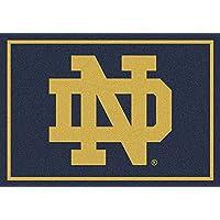 Millilken NCAA Team Spirit Door Mat - Notre Dame Fighting Irish ND
