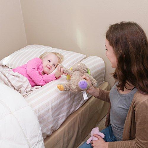 Review Premium Toddler Bed Rail