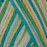 Lily Sugar 'n Cream Yarn Ombre (02223 Mod Ombre