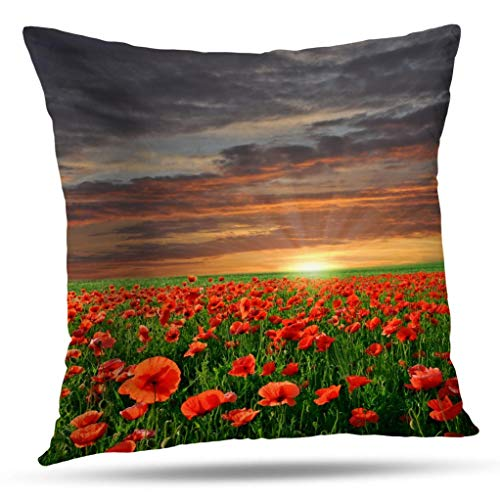 Kutita 18 x 18 inch Throw Pillow Covers,Poppy Flower Field At Sunset Pattern Double-sided Sofa Cushion Cover Couch Bed Pillowcase Home Gift Decorative Hidden Zipper Design Cotton Polyester