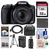 Canon PowerShot SX530 HS Wi-Fi Digital Camera with 32GB Card + Case + Battery & Charger + Tripod + Kit Review