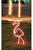 24'' Tropical Lighted Pink Flamingo Rope Light Outdoor Yard Art Decoration