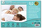 Set of 2 Super Soft Coral Fleece Pillow Protectors - Bed Bug & Dust Mite Bacteria, Allergy Proof / Waterproof Hypoallergenic Breathable & Cozy - Zippered Encasement, RestComfort (2, Queen 21''x31'')