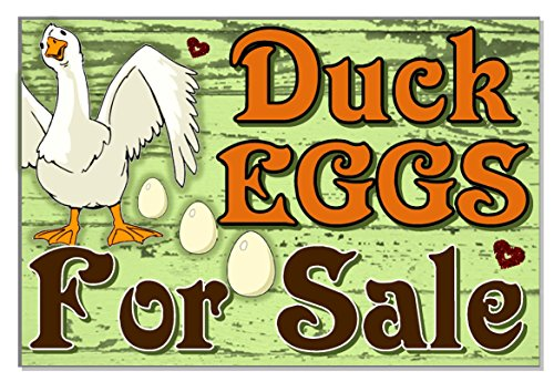 Ruskin352 Duck eggs for sale or personalized any wording Acrylic weatherproof Outdoor SIGN Plaque for yard coop house run garden yard GIFT
