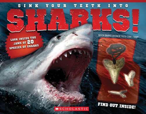Sink Your Teeth Into Sharks!