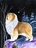 Caroline's Treasures SS8368CHF Starry Night Sheltie Flag Canvas, Large, Multicolor
