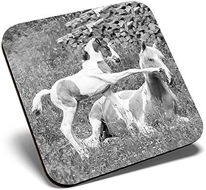 Gran posavasos cuadrado BW – Caballos y potros jugando | Posavasos de calidad brillante | protección de mesa para cualquier tipo de mesa #39738