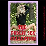 The Public Sex Collection: Twenty Erotica Stories | Debbie Brownstone,Nancy Brockton,Jane Kemp,Stacy Reinhardt,Cindy Jameson,DP Backhaus,Julie Bosso,Veronica Halstead,Tracy Bond