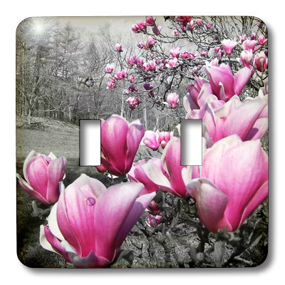 3dRose LLC lsp_20496_2 Spring Featuring Pink Flowering Blossoms in a Black and White Picture Double Toggle Switch