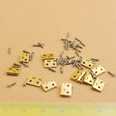helegeSONG Dollhouse Accessories,12Pcs Hinge + 48Pcs Screws Doll House DIY Mini Assembly Metal Mini Door Hardware: Toys & Games [5Bkhe1900468]