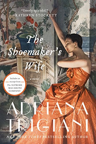 The Shoemaker's Wife: A Novel cover