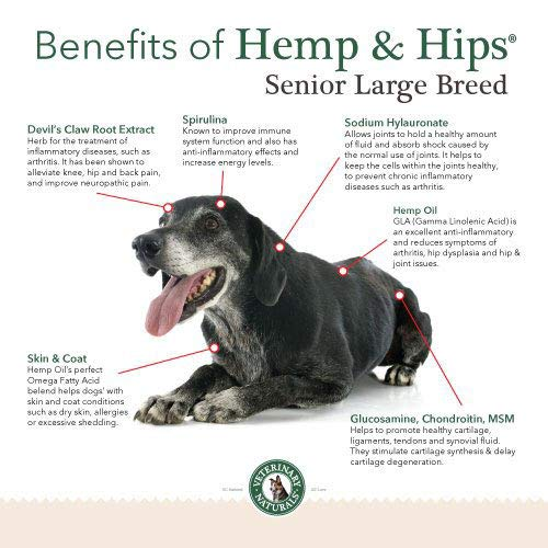 Veterinary Naturals Hemp & Hips Dog Joint Supplement - Glucosamine and Hemp Oil for Dogs - 'Senior Large Breed' Dog Arthritis Supplement - 60 Soft Chew Senior Dog Vitamins, Rotisserie Chicken Flavor by Veterinary Naturals (Image #4)