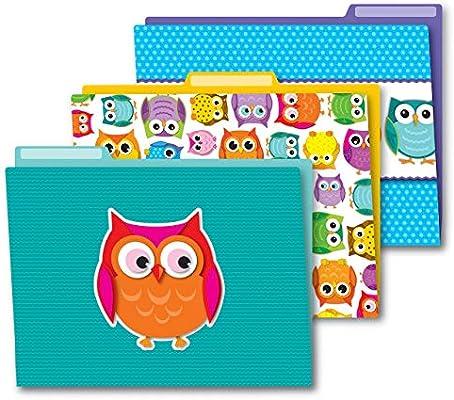 Amazon Com Carson Dellosa Colorful Owls File Folders 136009