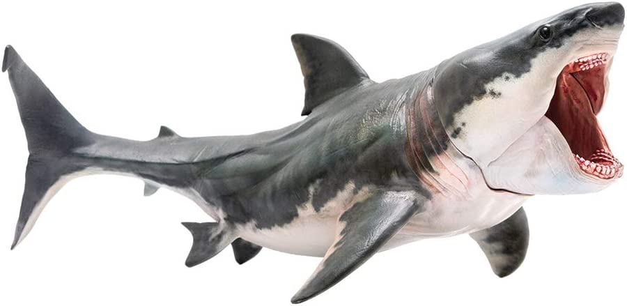 "PNSO Prehistoric Animal Models: Patton The Megalodon (Big White Shark) 6.2"" Ancient Sea Monster Toy"