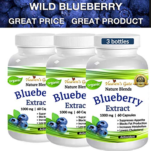 3 Wild Blueberry Extract - Made from Organic Berries - Powerful Antioxidant - GMO and Gluten Free - 1000 mg Per Serving (1 Capsule) - 180 Capsules (3-6 Months) - Supports Good Vision, Memory & Brain