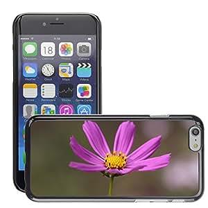 "Print Motif Coque de protection Case Cover // M00289856 Cosmos púrpura de la flor de la planta // Apple iPhone 6 6S 6G PLUS 5.5"""